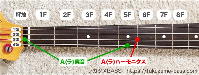 ベースの実音とハーモニクス